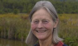 Nancy Hamill Winter